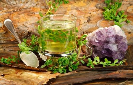 Guérir le thé de Brahmi (Bacopa monnieri) utilisé en médecine ayurvédique et d'une manière apaisante Banque d'images