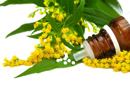 Homeopathy, Solidago globules with blossoms of goldenrod Stock Photo