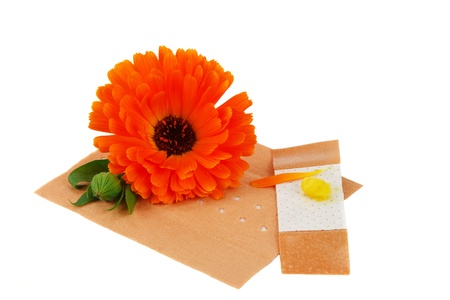 Calendula balm and a plaster for herbal healing Stock Photo