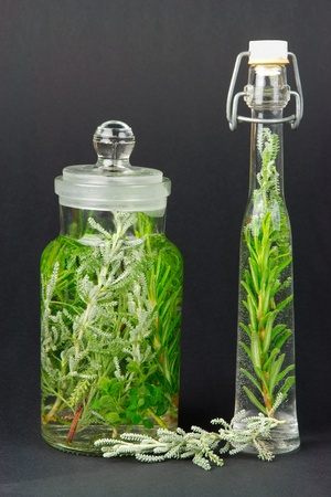 alternative practitioner: herbs, santolina, rosemary, in bottles for cooking or medicine