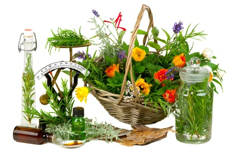 medicina: Hierbas para medicina o cocinar sobre fondo blanco