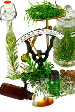 remedy: Herbs (Rosemary and different  santolina genus) for medicine on white background Stock Photo