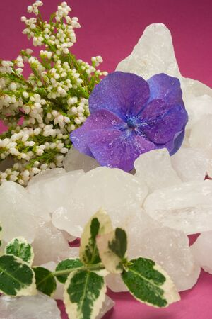 Autumnal rock crystal with ivy and blossom photo
