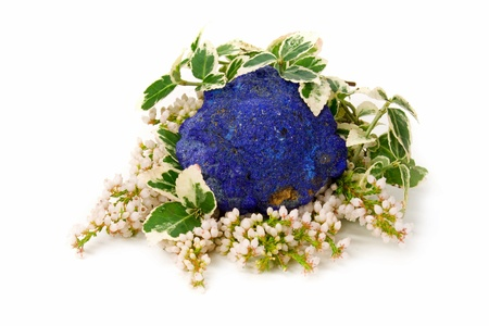 semi precious: Natural Azurite with heath and ivy on white background