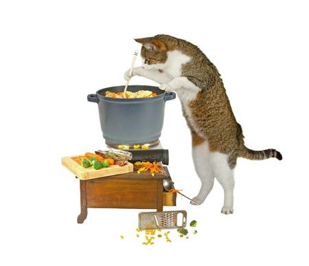 La nourriture est presque prêt ...