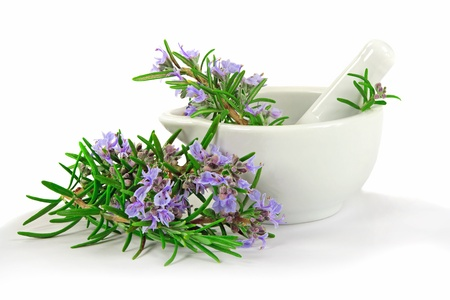 Rosemary for Kitchen or Healing
