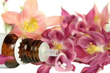 Aquilegia for  homeopathy Stock Photo - 13753123