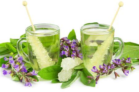 naturopathy: Ayuveda naturopathy herbal teas with sugar crystals and fresh salvia flowers