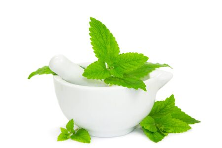 potherb: Lemon balm leaves with pestle and mortar used to crush the leaves for herbal and medicinal use and as a flavouring in cooking