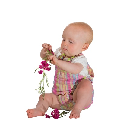 absorbed: Pretty young baby, 10 months, sitting barefoot on the floor totally absorbed in playing with a small bunch of pink flowers isolated on white Stock Photo