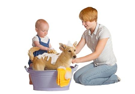 12 month old: Madre e bambino lavare il proprio cane - isolati su bianco