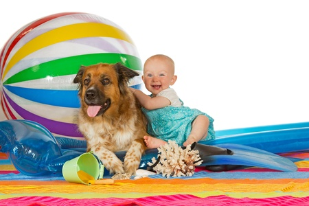 lilo: Adorable laughing little baby hugging a large brown dog on a plastic lilo with a large striped beach ball and colourful towel, studio image against white