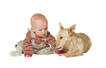 A faithful jack russel terrier lies patiently guarding an inquisitive little baby, his friend and companion for life isolated on white Stock Photo - 15040951