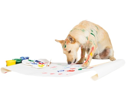 Creative jack russel terrier dog painting with its paw on a large sheet of paper from a colourful palette of paints while streaked with paint itself