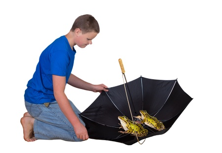 sheltering: Young man kneeling down on the floor looking in surprise at two large frogs or toads sheltering in his open upturned umbrella patiently sitting and waiting for the rain and moisture