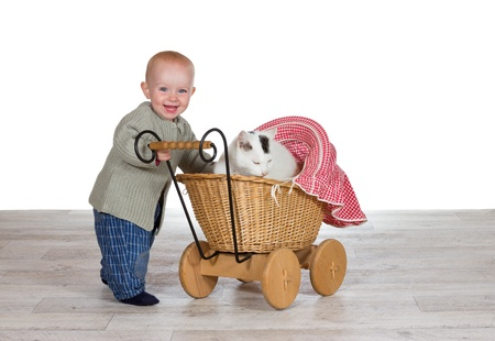 Joyful young baby standing holding the handle of a toy wicker pram with the family cat contentedly snuggled up on a blanket inside photo