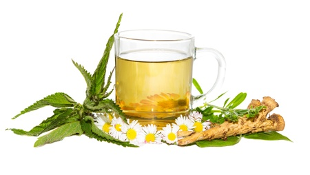 Fresh herbal infusion or tea for the springtime detoxifying cure , with Bellis prennis and Urticaceae Stock Photo
