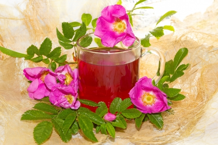 herbal remedy: Herbal infusion , or tea of Rosa canina plant or dog Rose, with curative power  Stock Photo