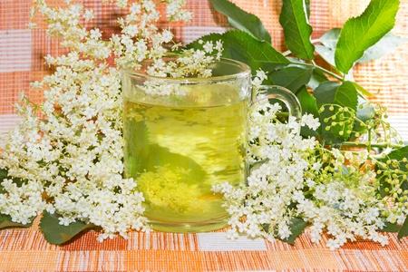 Infusione di erbe o tè dell'anziano o Sambucus fiori, usato da coughts per aiutare diaforetica