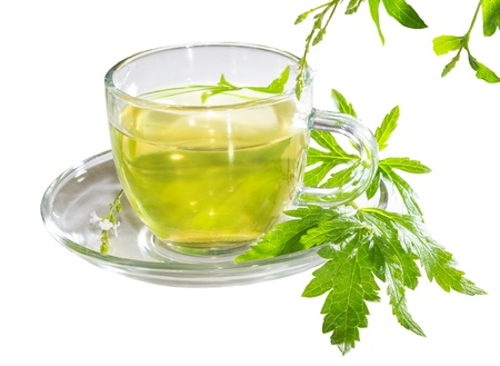 Refreshing cup of lemon verbena tea with fresh leaves of the Verbena officinalus plant long used as a remedy for insomnia photo