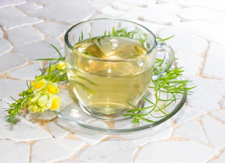 Cup of yellopw toadflax, or Linaria vulgaris, infusion or tea in a clear glass cup used in naturopathy as a diuretic and laxative photo