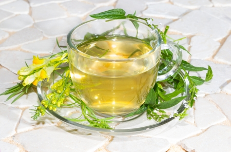 Cup of toadflax and Verbena Infusion used in naturopathy. photo