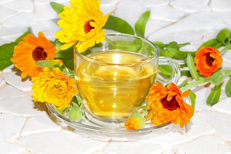 botanical remedy: Fresh colourful orange flowers of the Pot marigold or Calendula officinalus surrounding a cup of herbal tea used as a bactericide, anti-inflammatory and antiviral treatment in naturopathy