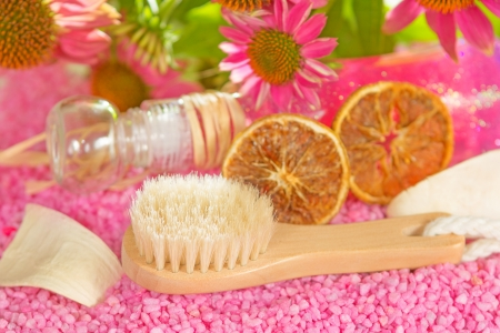 Small wooden bathing brush with bristles lying on pink gravel with a bottle of bath gel and fresh purple coneflowers or Echinacea in a bodycare still life photo