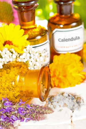 pot marigold: A brown glass bottle tipped on its side spilling dired crushed flower petals with fresh lavender and calendula, or pot marigold, for floral aromatherapy treatments, essential oil and plant extracts