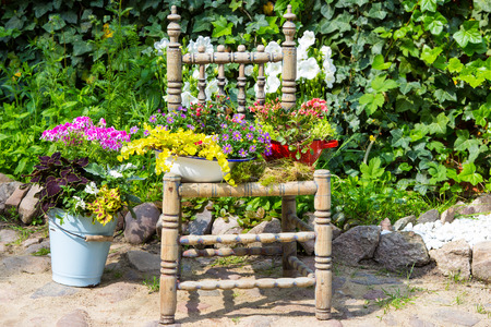 differnt: Garden decoration with a old chair and differnt plants makes a unique eyecatcher for rustic garden stye.