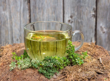 therapie: Clear cup containing an ifusion or herbal tea made from Thyme a healing plant used as a cure for disgestion, flatulenze and abdominal pain and it is antiseptic.
