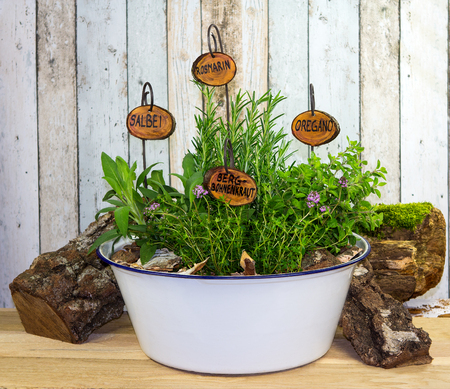 Many herbs in an old wash bowl with wooden signs with their names in german language.