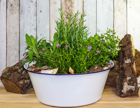 Many herbs in an old wash bowl, can be used as spice for cooking or for aromatherapie.