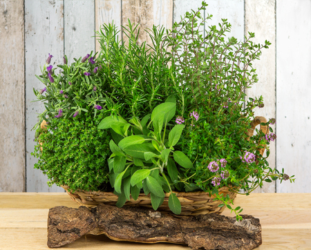 A basket full of herbs for the kitchen as fresh spice or for aromatherapie.