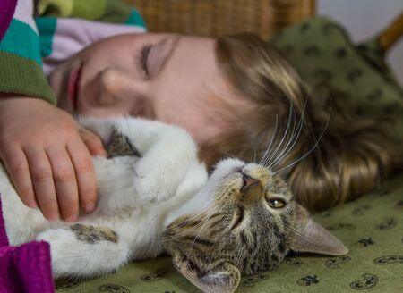 Little girl and cat are relaxing or sleeping, enjoying to be together.