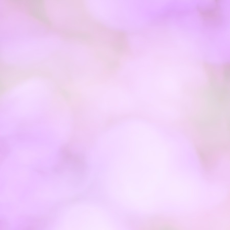 traquil scene: blur pink colorful background