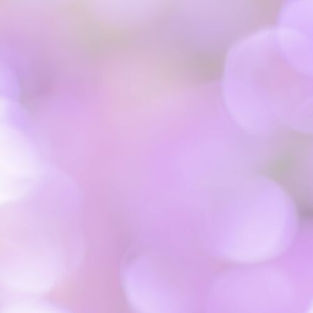 traquil scene: beautiful blur bokeh in violet colorful background Stock Photo