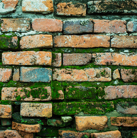 clay brick: grunge baked clay brick wall background with moss Stock Photo
