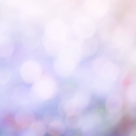 photography backdrop: Beautiful abstract  multicolor bokeh background in purple