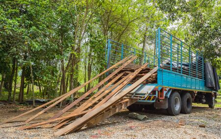 pile of old plank and  truck with green forest background