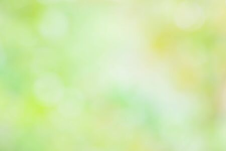 photography backdrop: blur colorful abstract background in green and yellow Stock Photo