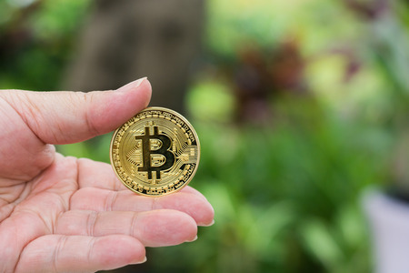 Hand holding golden Bitcoin with green natural background. Stock Photo
