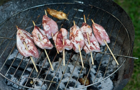 broiling: BBQ Squid