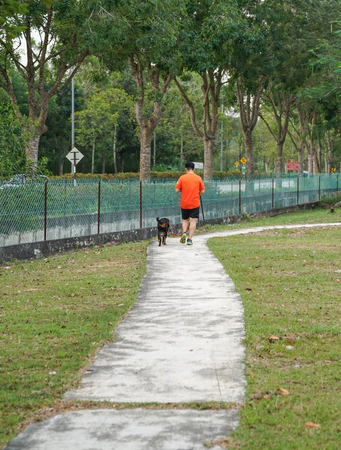 Man and dog walking in the park