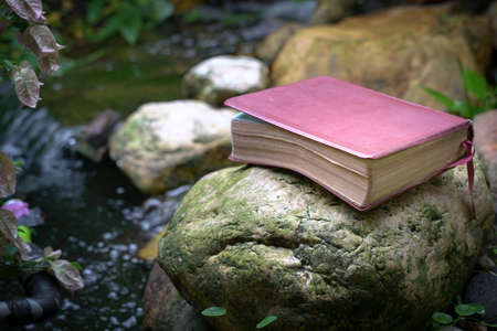 Bible with leather cover on top of a stone next to a pond. Refreshing Word of God. 写真素材