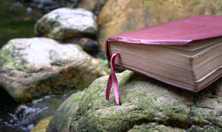 Bible with leather cover on top of a stone next to a pond. Refreshing Word of God. Closeup. 写真素材