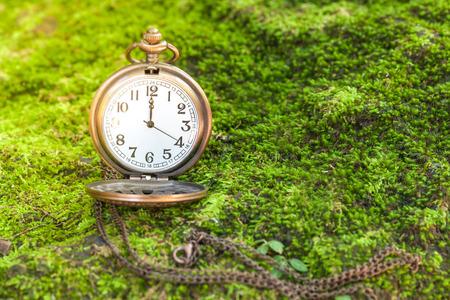 Antique clock vintage on green grass