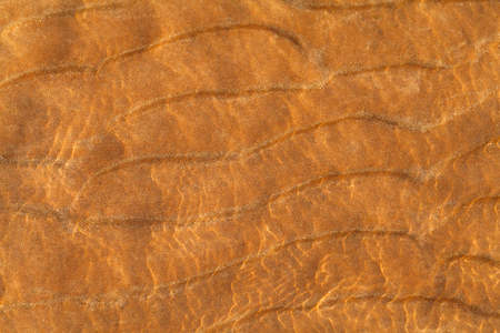 Sand waves texture . Sandy beach for background. Top view