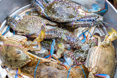 Blue Crabs in stainless Pot waiting for steaming, it is a easy homemade cooking. thailand