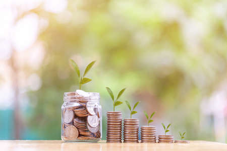 the concept of Saving money with stack money coin. Money growing for the future, Business,Finance,saving,Profit on soft light nature background Stock fotó